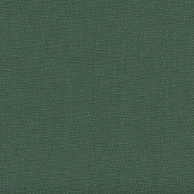 #10249 Forest Green